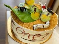 Еще один тортик в коллекцию)