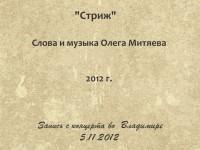Стриж. Владимир 5.11.12