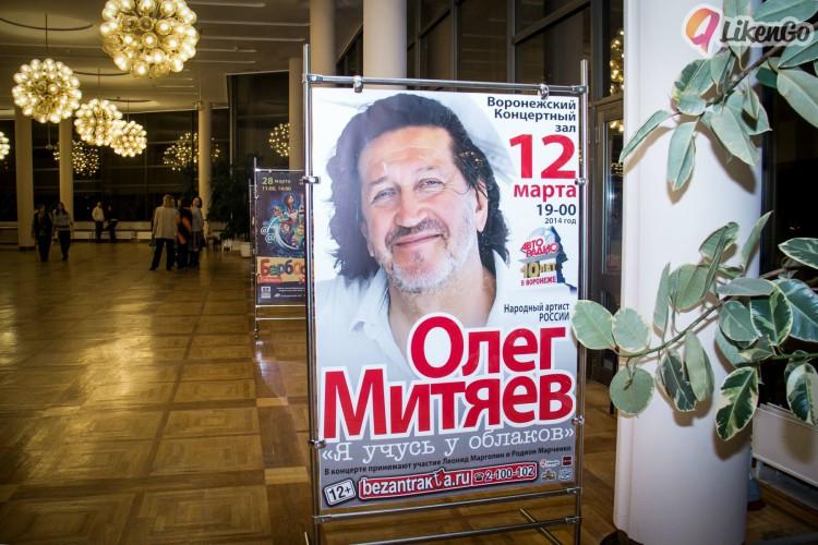 Воронеж 12 марта 2014 г
