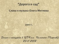 Дорога в сад. Королёв 20.11.2012