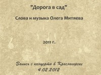 Дорога в сад. Красногорск 4.02.2012