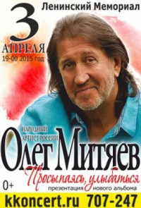 Ульяновск 3.04.15