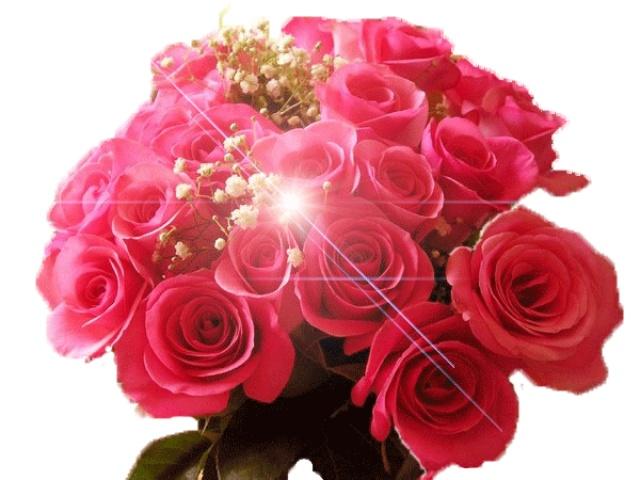 розы роз