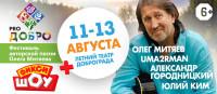 """Фестиваль """"PRO Добро"""", г. Доброград"""