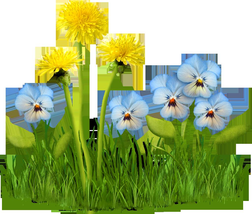 Spring-Flowers_2_074