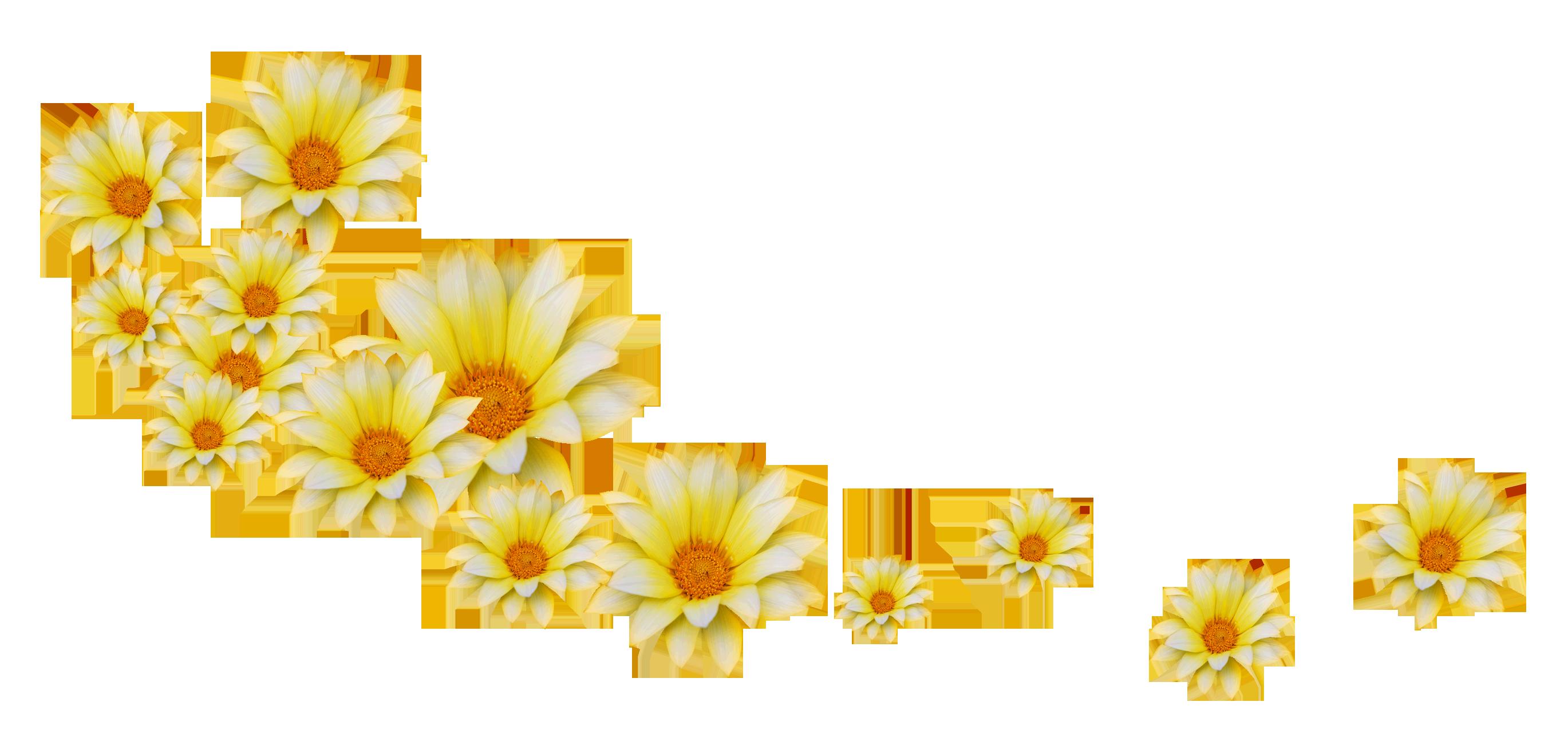 flower-16-11