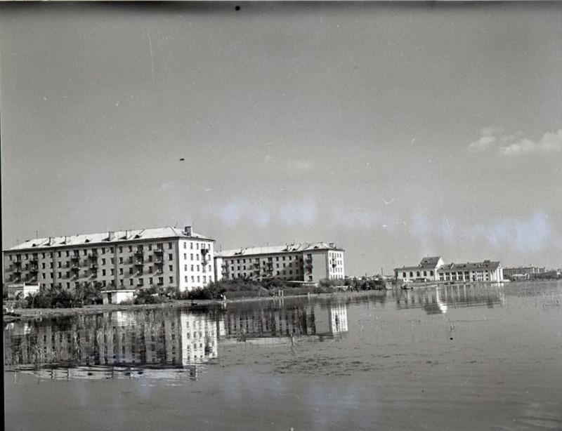 Вид на оранжерею с озера Смолино.1964 г.