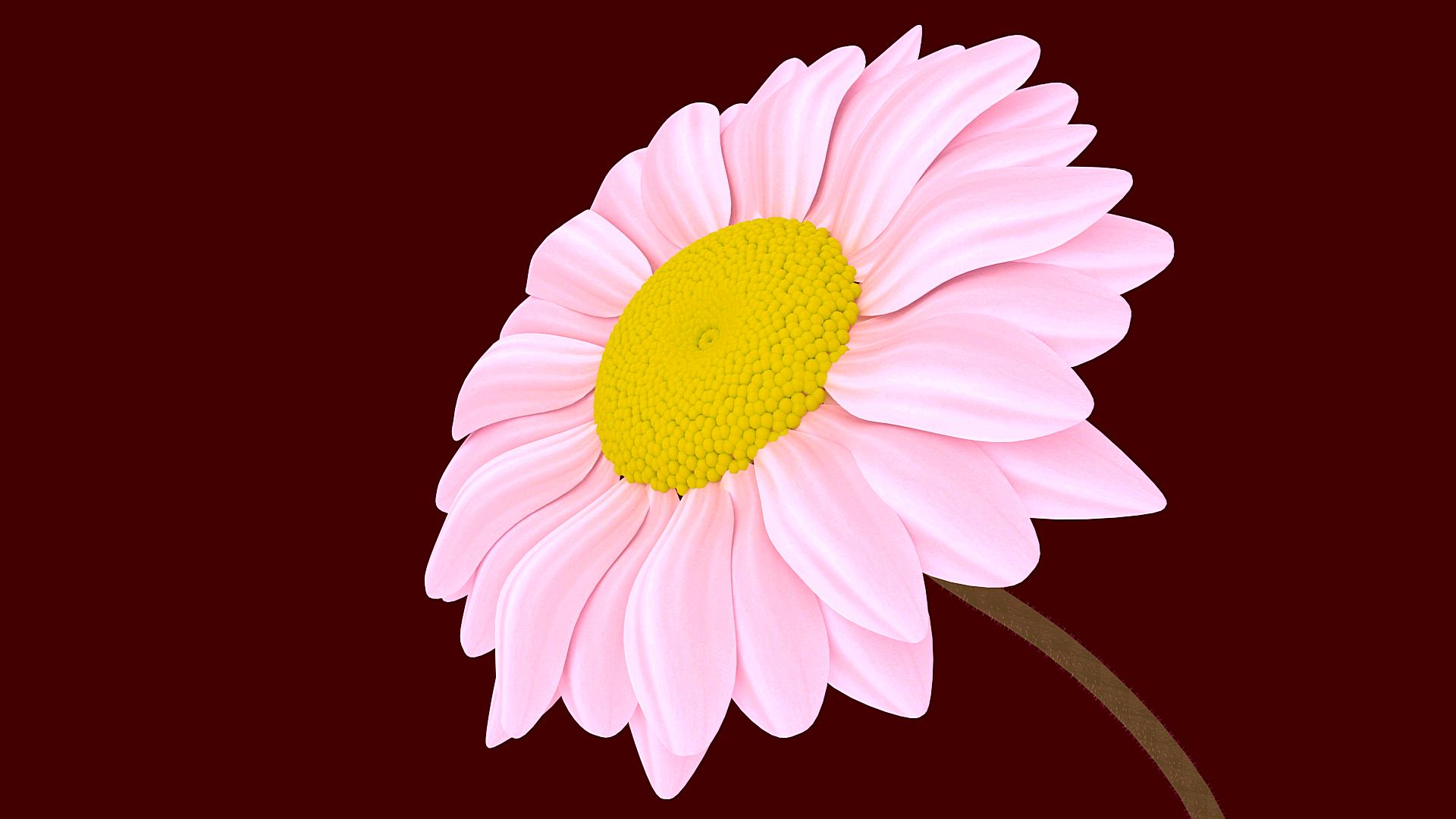 2665-FlowerZ