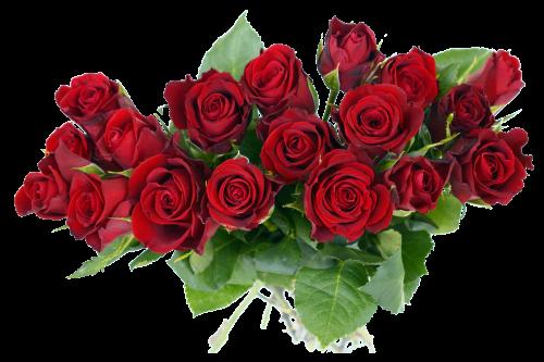 PNGPIX-COM-Rose-Bouquet-PNG-Transparent-Image