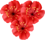 55-550189_polynesia-clipart-tropical-flower-tropical-flowers-transparent-background