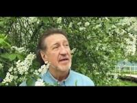 Премьера клипа «Аннушка»